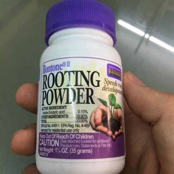 Rooting Power - ra rễ, con,...