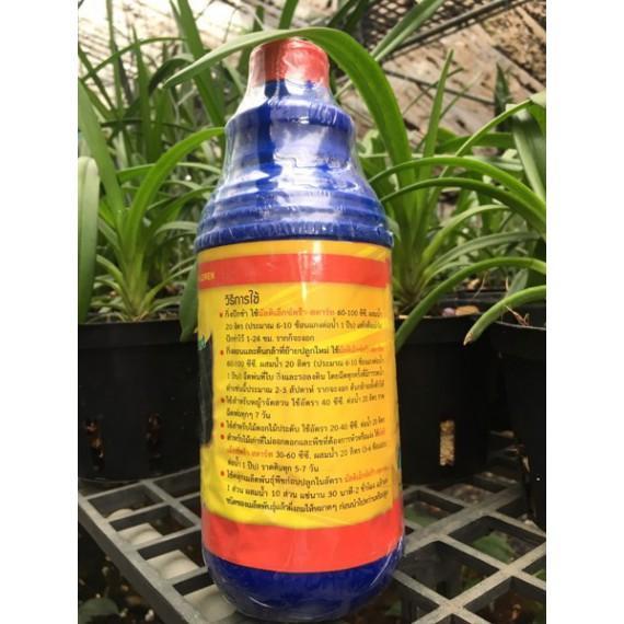 B1 & Amino Acid Xanh Thái Lan