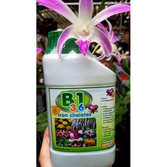 B1 3.6 chuyên làm hoa từ...