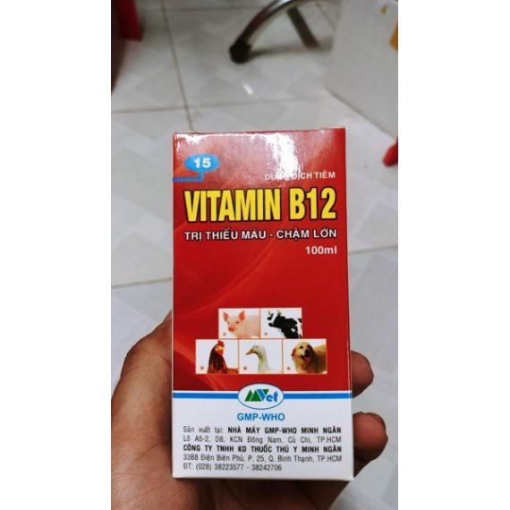 Vitamin B12 (CÓ NƯỚC) giải...