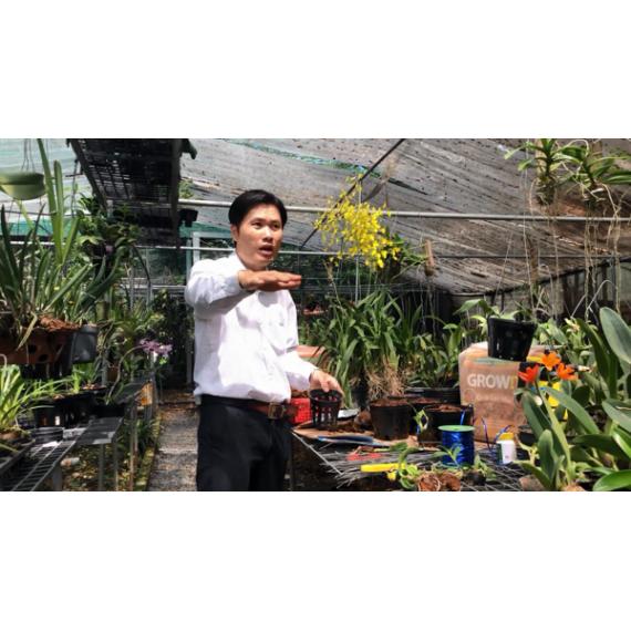 Khóa 6- Video Lớp học trồng...